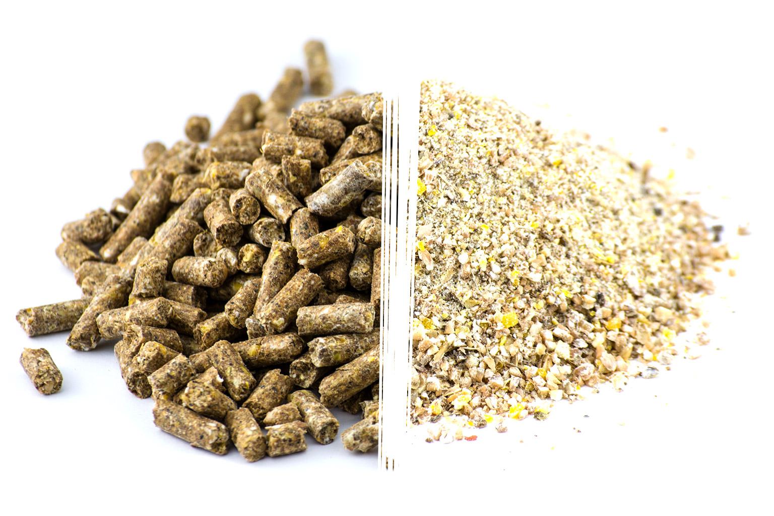 Ausgleichsfutter pelletiert und als Bruch